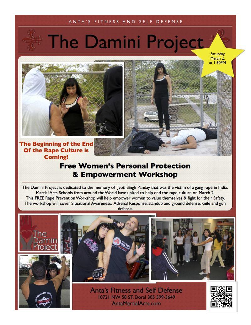 Damini Project 3-2013