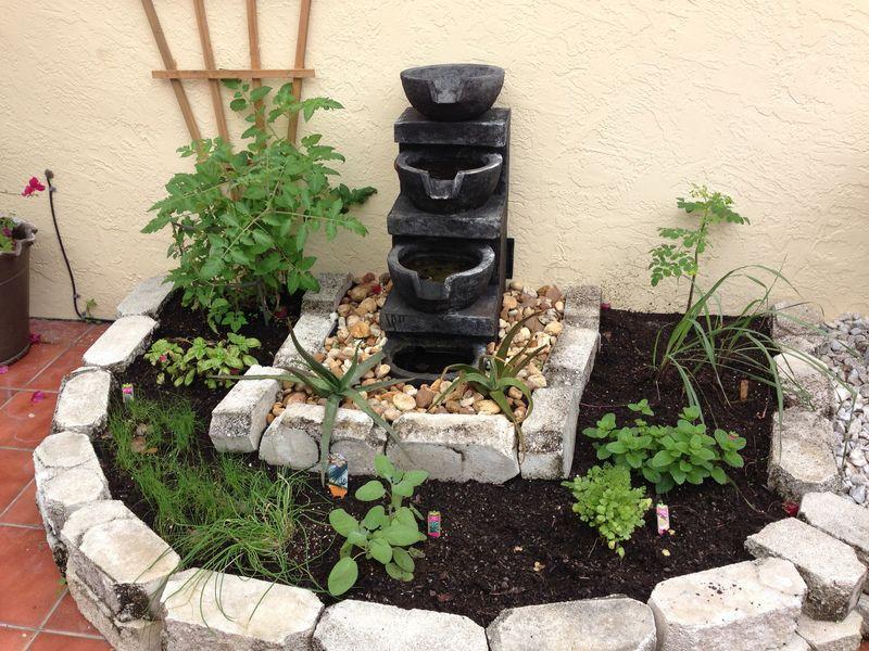 Organic Garden 1-13-14