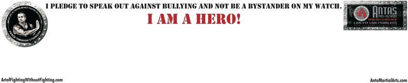 Art of fighting hero banner