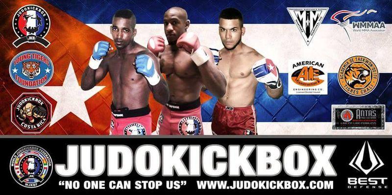 Judokickboxbanner